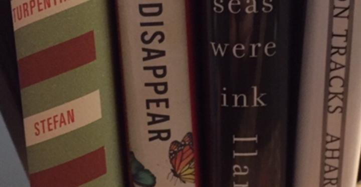 My Year In Books2017